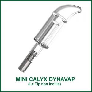 Mini Calyx pour vaporisateurs DynaVap - petit bubbler miniature