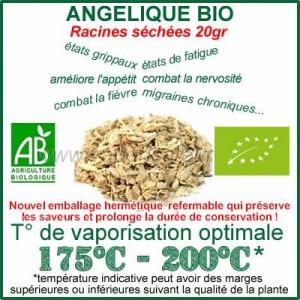 Angélique Bio Racine en vrac sachet de 20gr