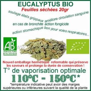 Eucalyptus Bio feuilles séchées 20gr