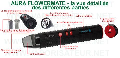 La vue détaillée du vaporizer pen Aura Flowermate