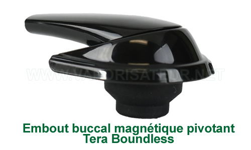 L'embout pivotant magnétique plastique du vaporizer Tera