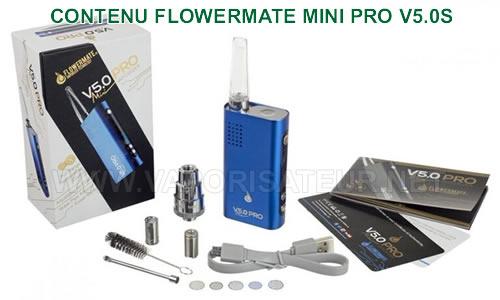Le détail de tous les accessoires fournis avec le vaporizer Flowermate Mini Pro