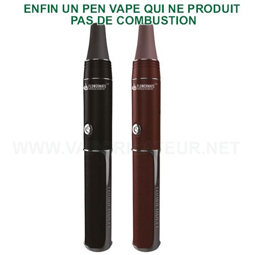 Vapo pen Flowermate-III - stylo vapo Vapormax V3 sans combustion
