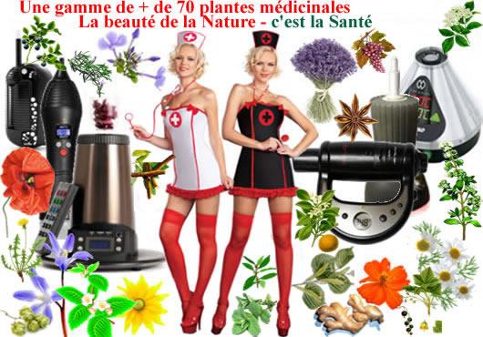 5 plantes médicinales bio offertes avec chaque vaporisateur acheté